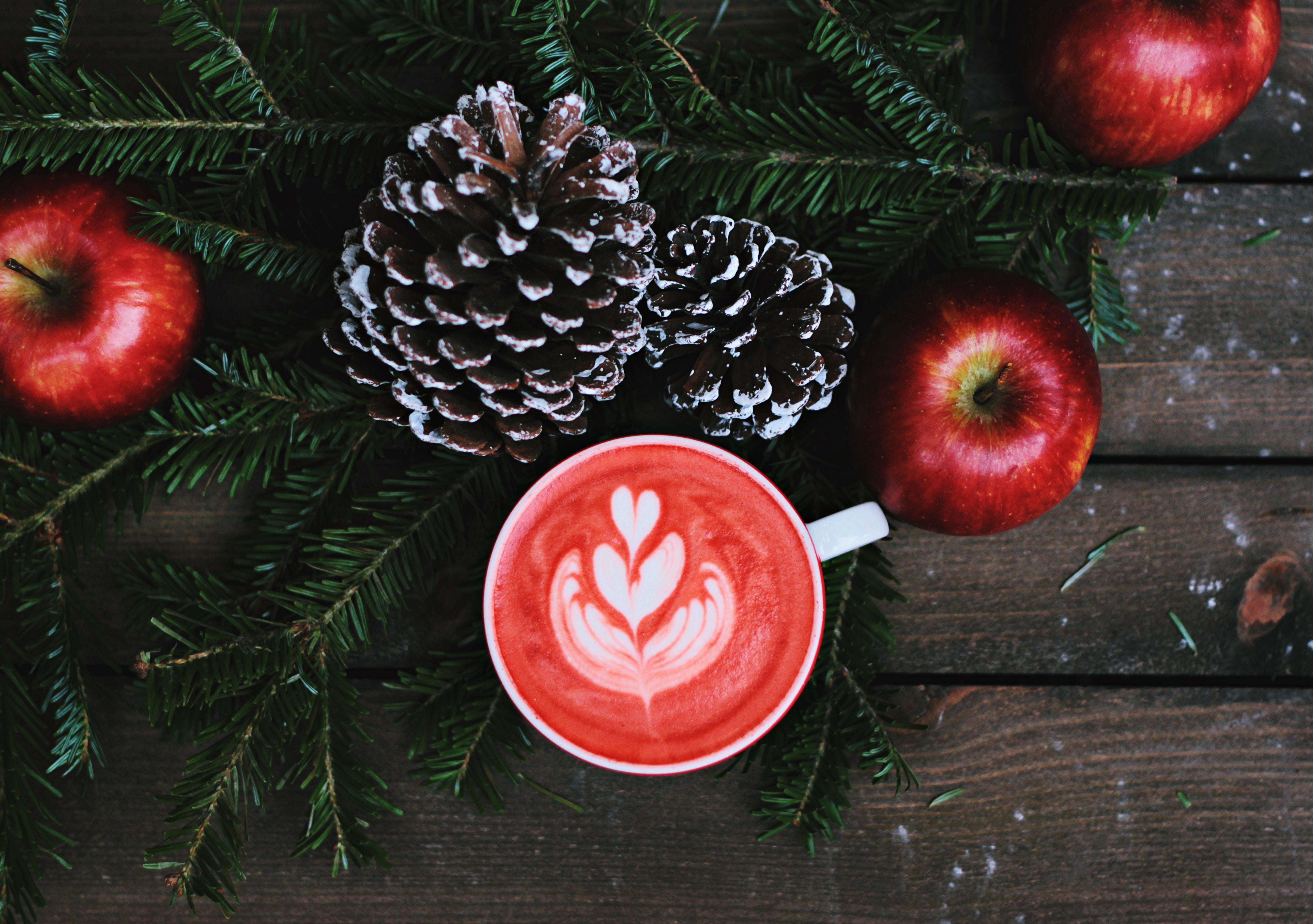 a karácsonyi előkészület örömei